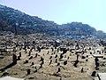 Kartie Sakhali old grave yard - panoramio.jpg