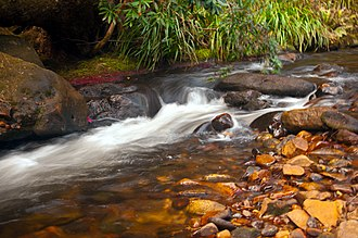 Kedumba River - Rapids on the Kedumba River