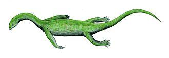 Nothosaur - Image: Keichousaurus BW