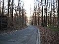Kellerwald, Auf den Kellern - panoramio.jpg