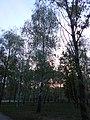 Khimselyshche, Cherkasy, Cherkas'ka oblast, Ukraine - panoramio (346).jpg