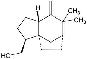 Chrysopogon zizanioides - Image: Khusimol