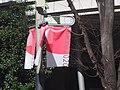 Kichijoji 吉祥寺 (49650155318).jpg