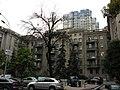 Kiev. August 2012 - panoramio (188).jpg