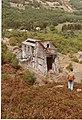 Klondyke Lead Mine - geograph.org.uk - 74887.jpg