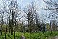 Kołbiel park - panoramio (3).jpg
