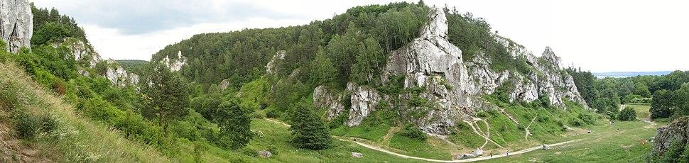 Kobylańska Valley