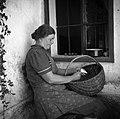 """Kos Otilija, Stranj 14 (Gorenje Vrhpolje) lupi krompir. V naročju ima """"košarno"""" (košaro) s krompirjem 1952.jpg"""