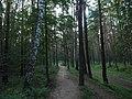 Kotelniki, Moscow Oblast, Russia - panoramio (122).jpg