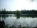 Kruppsee Duisburg.jpg