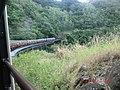 Kuranda QLD 4881, Australia - panoramio (34).jpg