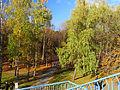 Kyiv Internatsionalny Park15.JPG