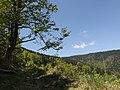 Lúčanská Fatra - panoramio.jpg