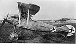 LFG Roland D.VII no 2.jpg