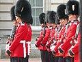 LONDON Buckingham Palace Garzile - panoramio.jpg