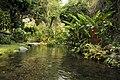 Lago de Catemaco, Veracruz- Catemaco Lake, Veracruz (23813733445).jpg