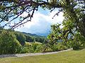 Landscape of Bjelusa - 7408.CR23.jpg
