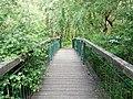 Landschaftsschutzgebiet Wäldchen bei Buer Melle Datei 11.jpg