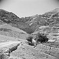 Landschap in de omgeving van Jericho.Waterkanaal t.b.v. irrigatie op de voorgron, Bestanddeelnr 255-5605.jpg