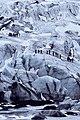 Langjokull, Iceland (Unsplash).jpg