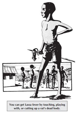 Lassa fever - Wikipedia
