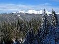 Latschur Südwestansicht Winter 2012.jpeg