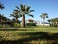Lavris, Greece - panoramio (2).jpg