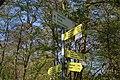 Leitenwälder der Isar 0669.jpg