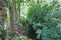 Lieusaint - 2019-05-07 - IMG 0974.jpg
