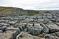 Limestone Pavement above Malham Cove - geograph.org.uk - 1743560.jpg