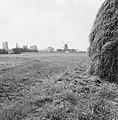 Lindense Enk, Bestanddeelnr 159-0786.jpg