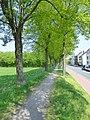 Lippstadt P1010589 (8709872490).jpg