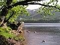 Loch Chon - geograph.org.uk - 397901.jpg