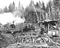 Logging crew at loading operation, with skeleton railroad cars and two donkey engines, Waite Mill and Timber Company, ca 1920 (KINSEY 733).jpeg
