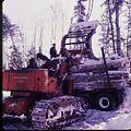 Logging northern Ontario 01.jpg