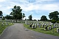 Looking S at section 52 and 51 - Mt Olivet - Washington DC - 2014.jpg