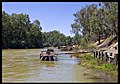 Looking up the Murray River Echuca-1and (4244399300).jpg