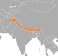 Lophophorus impejanus range map.png