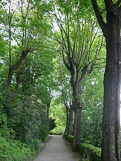 Parc des Hauteurs park in Lyon, France