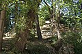 MADRID PARQUE de MADRID COLINA ARTIFICIAL VIEW Ð 6K - panoramio (8).jpg