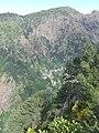 Madeira - Curral das Frieras - Pico do Ariero (11774556634).jpg
