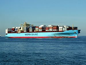 Maersk Kolkata p02 approaching Port of Rotterdam, Holland 21-Feb-2005.jpg