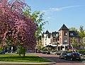 Magnificient prunustree at the little square of the van Lawick van Pabstlaan Arnhem - panoramio.jpg