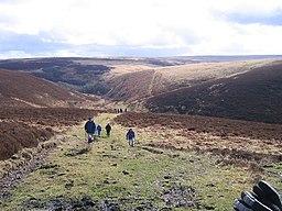 Exmoor National Park Dog Off Lead Walks