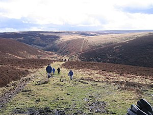 Exmoor - Typical moorland scenery on Exmoor