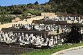 Malta - Paola - Addolorata Cemetery 12 ies.jpg