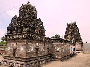 Pavalavannam temple - Image: Manavalamamunigal 05