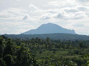 Mount Macolod - Image: Marian Orchard Baletejf 0045 20