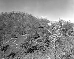 Marine HRS helo near Hill 812 during Battle of the Punchbowl 1951.JPEG