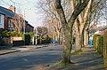Martinez Avenue, Belfast - geograph.org.uk - 685655.jpg